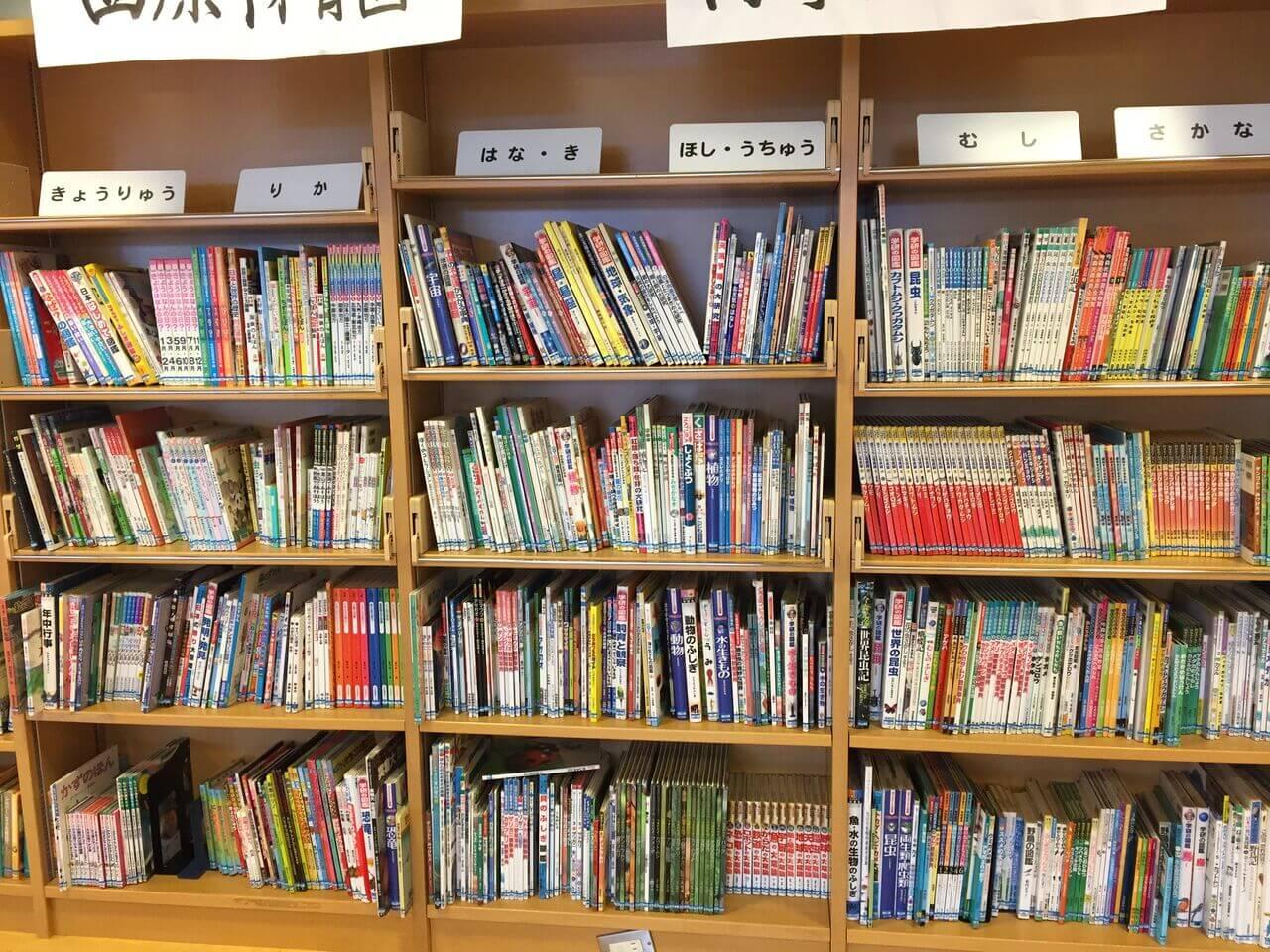 大きい子向けの本も充実-003